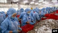 Công nhân làm việc tại một nhà máy chế biến thủy sản ở Việt Nam.