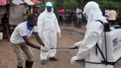 Medical Research Keeps Up Fight Against Ebola