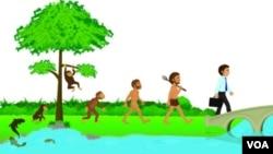 Seberapa miripkah kita dengan nenek moyang manusia purba? Peta genetika dapat memberikan gambaran yang jelas mengenai proses evolusi.