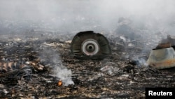 FILE - The site of a Malaysia Airlines Boeing 777 plane crash is seen near the settlement of Grabovo in Ukraine's Donetsk region, July 17, 2014.