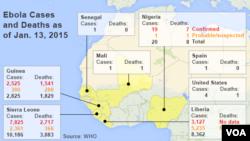 Thống kê các ca nhiễm và tử vong do Ebola tính tới ngày 13/1/2015.