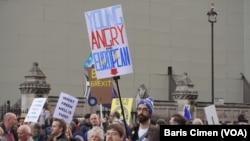 1 Milyon İngiliz Brexit'de Son Sözü Söylemek İçin Yürüdü
