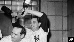 New York Yankees manager Yogi Berra gets a champagne shampoo from Pete Ramos after the Yanks clinched the American League Pennant by defeating Cleveland, 8-3, Oct. 3, 1964.