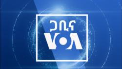 ዐርብ፡-ጋቢና VOA