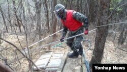 한국 합동참모본부는 지뢰사고 예방을 위해 실시한 '2014년 지뢰제거작전'을 종료했다고 28일 밝혔다.