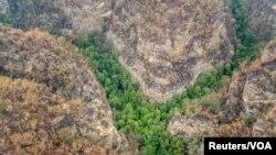 Wollemi Milli Parkının areal görüntüsü