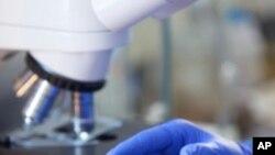 คณะวิทยาศาสตร์ต่างชาติในสหรัฐวิจัยว่า ความร้อนจากการใส่อนุภาคแม่เหล็กนาโนในเนื้อเยื่อที่เป็นมะเร็งจะฆ่าเซลล์มะเร็งได้ไหม?