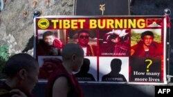 Các nữ tu Phật Giáo Tây Tạng nhìn vào một tấm áp phích hiển thị hình ảnh của những người tự thiêu kể từ tháng 3 ở Tây Tạng sau một buổi cầu nguyện dưới sự chỉ đạo của Đức Đạt Lai Lạt Ma ở Dharmsala, Ấn Độ