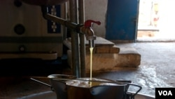 Olive press in the Nafusa Mountains, Libya, April 09, 2012. (Stephanie Figgins)