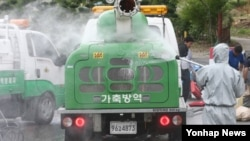 24일 한국 경북 의성군 비안면 한 돼지농가 주변에서 구제역이 발생해, 방역당국이 차량 통행을 제한하고 긴급 방역 작업을 하고 있다.