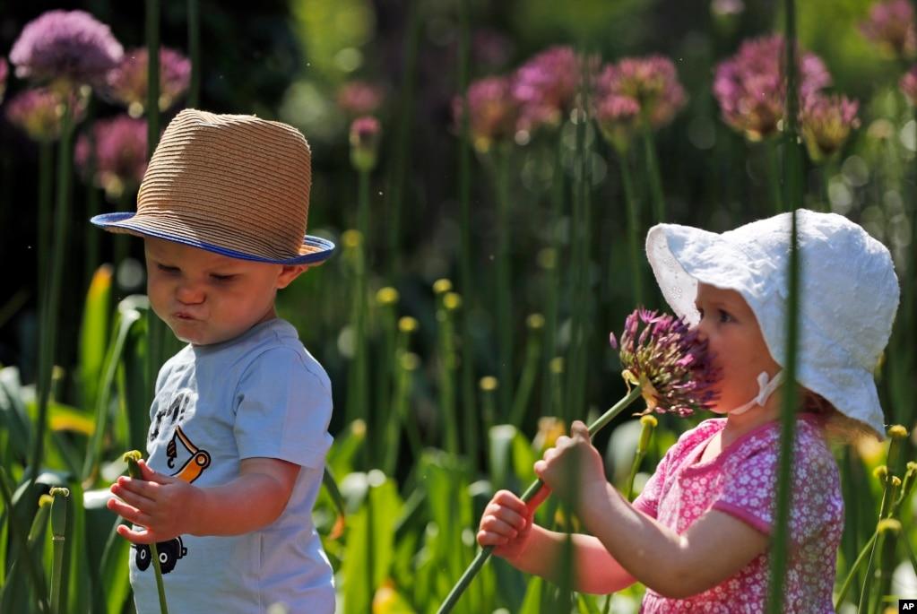 영국 런던큐 왕립 식물원에서 프레디와 마르다가새로 개방한 '아이들의 정원'에서 꽃을 만지며 체험학을 하고 있다.