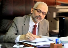 RAlaa Abdel Aziz, Egypt's new culture minister in Cairo, June 17, 2013.