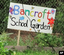 The garden and plantings at Bancroft Elementary School in Washington help prevent polluted runoff from the school yard and parking lot into Rock Creek across the street