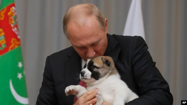 FILE - Russian President Vladimir Putin holds a puppy presented to him by Turkmenistan's President Gurbanguly Berdymukhamedov during their meeting in the Bocharov Ruchei residence in the Black Sea resort of Sochi, Russia, Oct. 11, 2017.