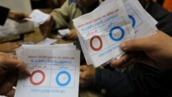 Egypt's Constitutional Referendum