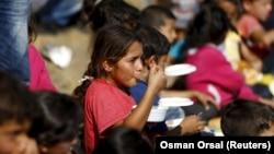 ملل متحد گفته است که شمار کودکان پناهجوی بدون همراه رو به افزایش است