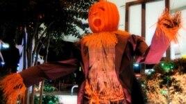 A Pumpkin-Headed Halloween Scarecrow