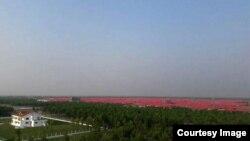 Khu trại tập trung (mái tôn đỏ) trên đảo Bhasan Char, Bangladesh.