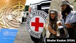 طالبانو په تېره حمل میاشت کې د سره صلیب پر فعالیت بندیز لګولی و