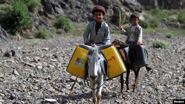 Children ride on donkeys after filling jerry cans with water on the road between Sanaa and Hodeidah, May 16, 2013.