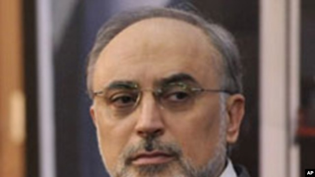 Ali Akbar Salehi, Iran's nuclear chief and interim foreign minister(file photo)