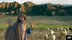امریکی ایوان میں بلوچستان پر قرارداد، پاکستان کی تشویش