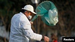 A public park staff catches a dove at a public area in downtown Shanghai Apr. 6, 2013. Shanghai's government has ordered workers to remove pigeons from public areas to prevent the spread of H7N9 bird flu to humans, local media reported.