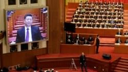 """专访林培瑞:中共赖以治国的""""恐惧文化"""""""