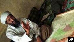 Bin Laden, líder da al-Qaida analisando um mapa