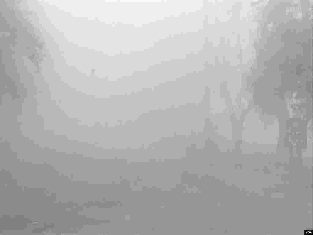 محکمہ موسمیات کے مطابق صوبہ پنجاب میں دھند آئندہ چند دنوں تک جاری رہے گی۔