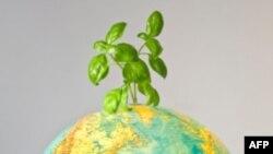 Мільйони людей відзначали в п'ятницю День Землі
