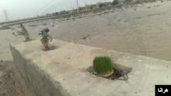ناظران حقوق بشر می گویند گور دست جمعی کشتار دهه شصت در ضلع شرقی قبرستان بهشت آباد اهواز قرار دارد