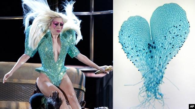 Lady Gaga (kiri) dengan kostum 'gametophyte' pada Grammy Awards 2012 (foto: dok). Botanis di Universitas Duke menamai spesies pakis baru dengan nama 'Lady Gaga'.