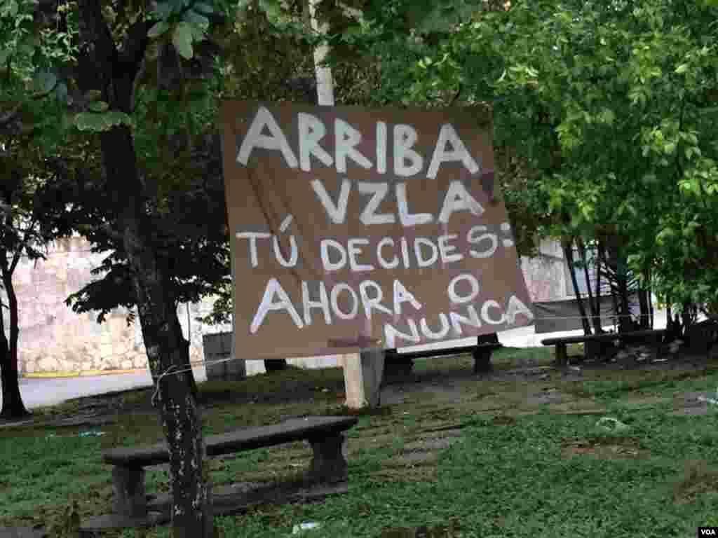 """""""Arriba Venezuela tú decides: Ahora o nunca"""", reza un letrero puesto en un árbol por la oposición venezolana. Foto: Álvaro Algarra/VOA"""