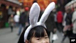 چین میں خرگوش کے سال کا جشن