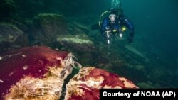 In this photo provided by the NOAA Thunder Bay National Marine Sanctuary a scuba diver observes the purple, white and green microbes covering rocks in Lake Huron's Middle Island Sinkhole. Feel like days are just getting longer? They are and it's a good th