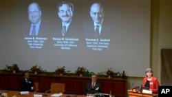 Los tres ganadores del premio Nobel 2013 de Medicina y Fisiología son presentados en Estocolmo, Suecia.