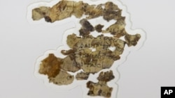 The Israel Antiquities Authority displays newly discovered Dead Sea Scroll fragments at the Dead Sea scrolls conservation lab in Jerusalem, Tuesday, March 16, 2021. (AP Photo/Sebastian Scheiner)