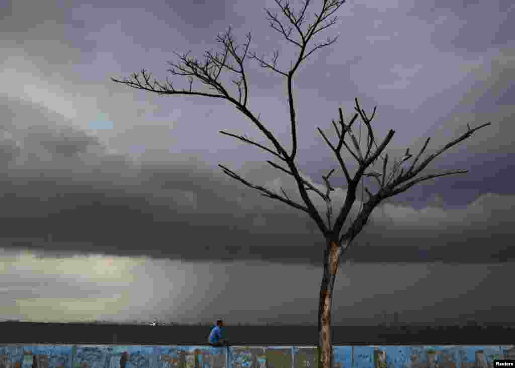 A man sits on the seawall near a dead tree at Muara Karang district in Jakarta.