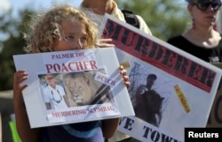 FILE - Protesters hold signs during a rally outside the River Bluff Dental clinic against the killing of a famous lion in Zimbabwe, in Bloomington, Minnesota, July 29, 2015.