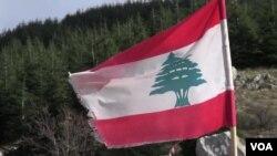 Cây hương nam là biểu tượng quốc gia của Libăng, trung tâm điểm của lá cờ quốc gia và chiếc khiên