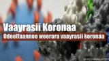 Varayrasii Koronaa