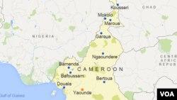Les manifestants ont brûlé des pneus sur la voie publique et la police est intervenue pour les disperser, à Bamenda, au Cameroun, le 23 novembre 2016.