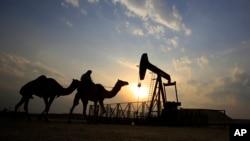 La OPEP debe reunirse el miércoles en Argelia para acordar una reducción de la producción que ayude a aumentar los precios globales del crudo.