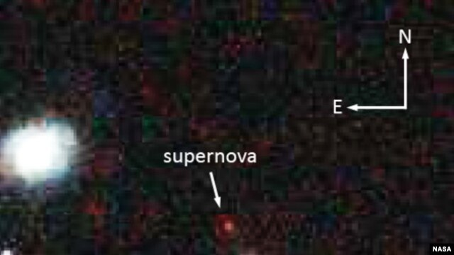 NASA's Hubble Space Telescope captured this image of the 10-billion year old supernova SCP-0401. (Credit: Space Telescope Science Institute)