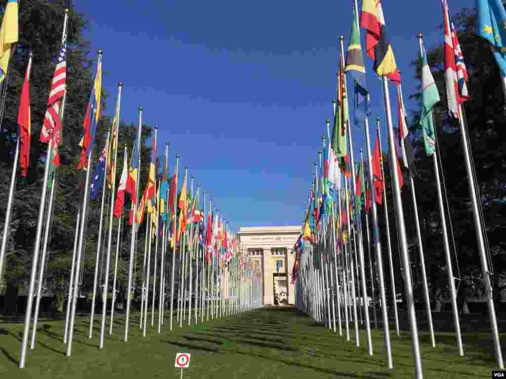 پرچمهای برافراشته کشورهای مختلف دنیا جلوه ویژهای به دفتر سازمان ملل بخشیده است.
