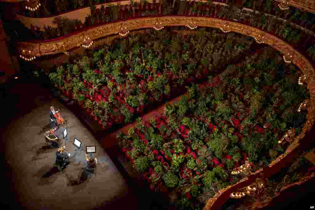 Musicians rehearse at the Gran Teatre del Liceu in Barcelona, Spain.