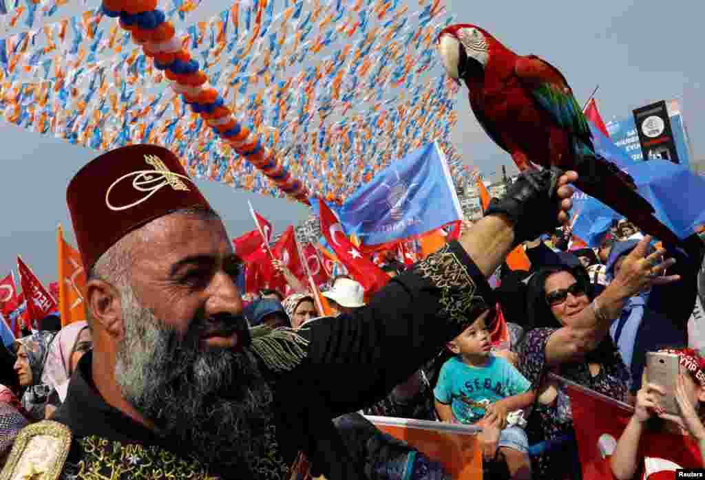 شرکت یکی از حامیان رجب طیب اردوغان به همراه طوطی اش در یک گردهمایی انتخاباتی در استانبول ترکیه