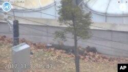 Hình ảnh người lính Triều Tiên đào tẩu bị đồng đội bắn gục hồi 13/11/2017 ở làng Panmunjom