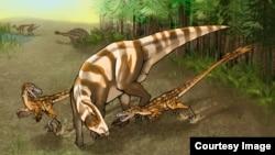Saurornitholestes sullivani attacks a subadult hadrosaur Parasaurolophus tubicen. (Illustration: Mary P. Williams)